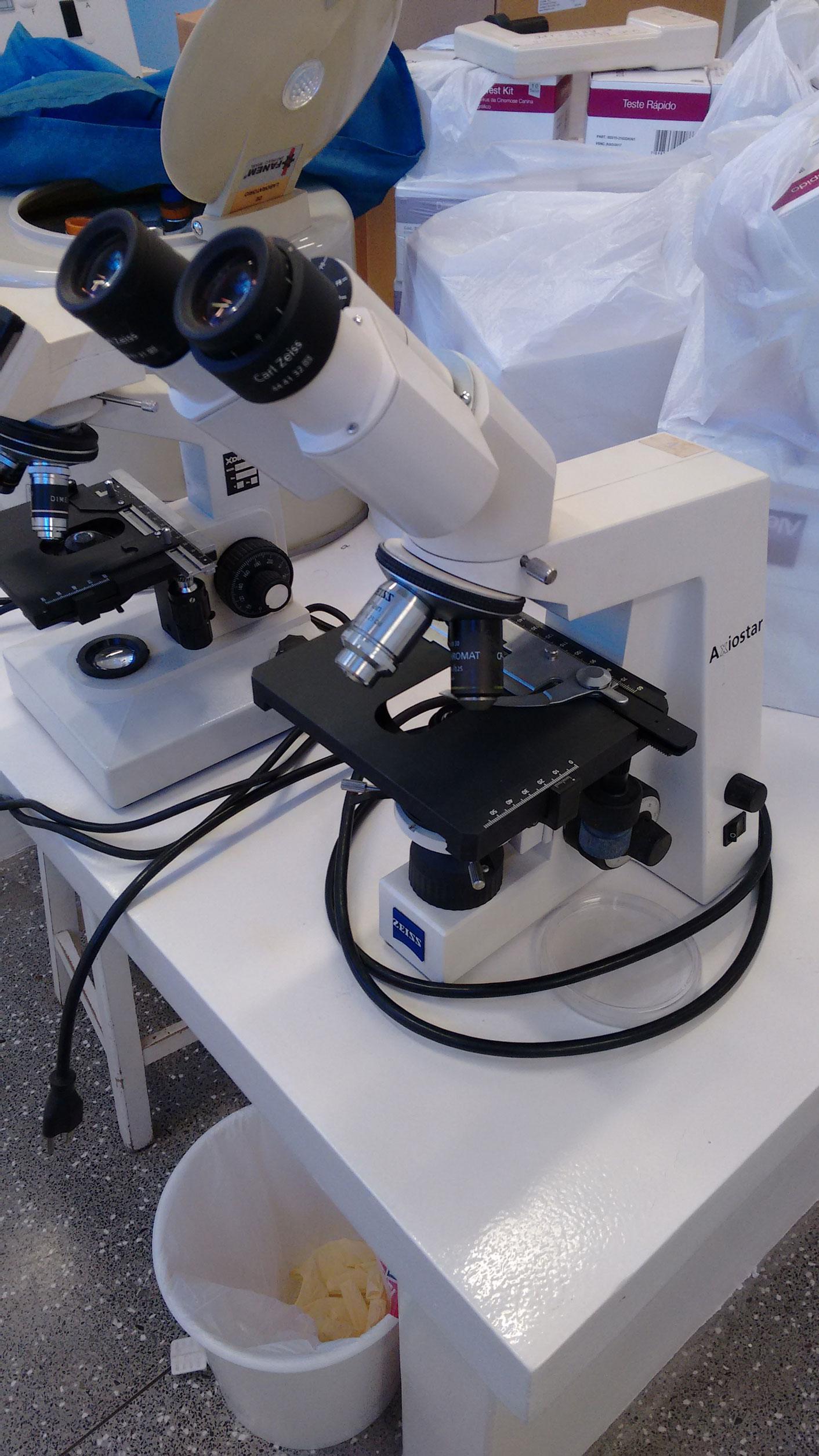 Microscópi